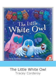 The little white owl with grey